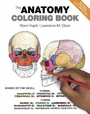 The Anatomy Coloring Book by Lawrence M. Elson and Wynn Kapit (Paperback, 4th...