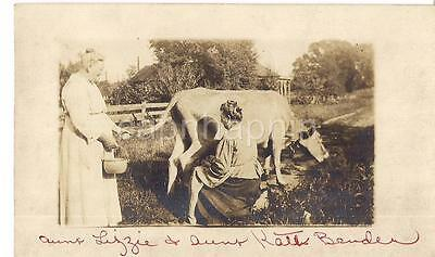 Women Holding Pail & On Stool Milking Dairy Cow Antique 1910s Photo Postcard