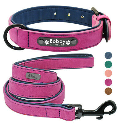 Personalised Leather Dog Collar & Lead Custom Soft Padded for Labrador Pink Blue