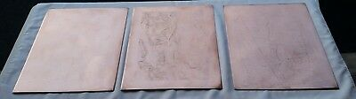 1898 USGS Antique Map Copper Printing Plates Berlin NY Jiminy Peak Ski + Map