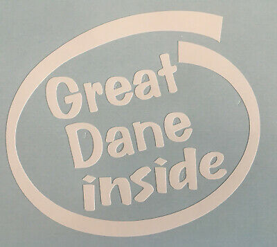 Great Dane Inside Dog On Board Car Window Sticker Decal White All Colours Made