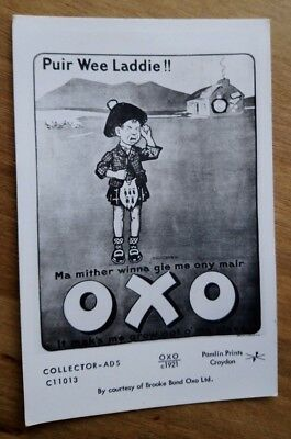 Advertising Postcard - Oxo c1921 - Wee Laddie!! - Pamlin Prints  c11013