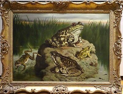Large 19th Century English Frog & Toad Still Life Study Antique Oil Painting
