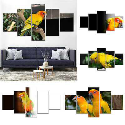 Conure Parrot Birds Canvas Print Painting Framed Home Decor Wall Art Poster 5Pcs