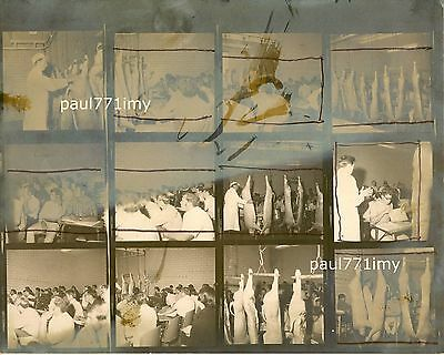 Unusual Vintage 60'S Cattle Slaughterhouse 8X10 Like An Andy Warhol Photo Panel