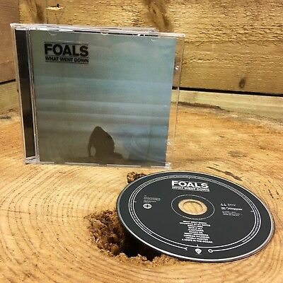Foals - What Went Down (CD, 2015)