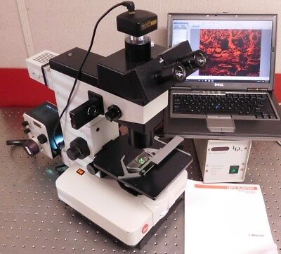Leitz Wild FLUOVERT FU Fluorescence Phase Inverted Microscope
