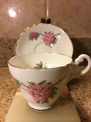 Regency White Bone China Cup and Saucer Pink Clusters Gold Trim Scallopedcup & s