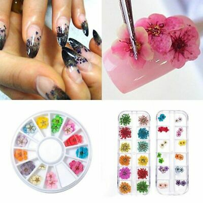 Real Dried Dry Flower 3D Nail Art Decoration Design DIY Tips Manicure 12 Colors