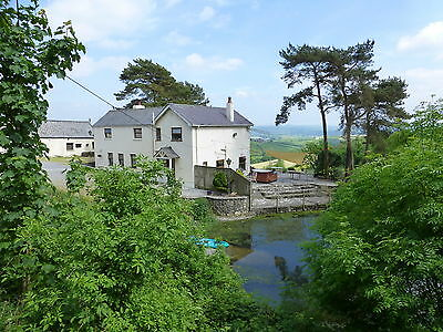 This Weekend Late Deal  West Wales Farmhouse  Holiday Cottage Sleeps 12 Hot Tub