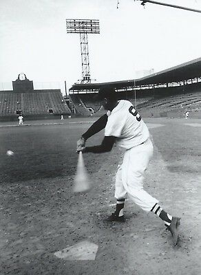 """Ted Williams - 8"""" x 10"""" Photo - 1950's - Fenway Park - Boston Red Sox"""
