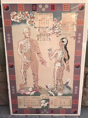 Michael Spatuzzi Extra- Meridian Command Points Acupuncture Chart 40 X 29