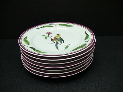 Lynn Chase PARROTS of PARADISE Bread & Butter Plates / Set of 7