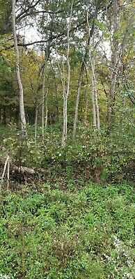 ONE Acre of Residential Vacant Land Lot in Ross County, Ohio. NICE Real Estate!!