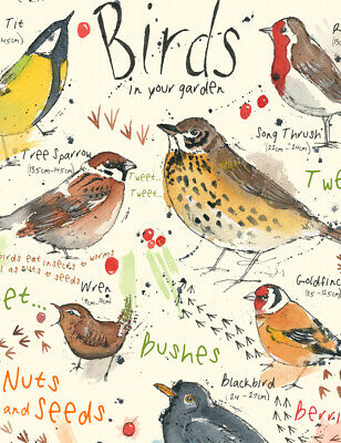 A4 Educational British Garden Vintage Bird Poster Nature Wildlife Print