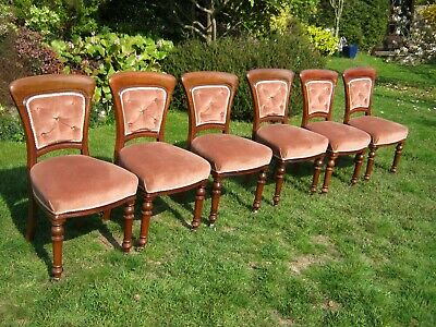Set of 6 Magnificent Victorian Mahogany Buttoned Back Dining Chairs, Turned Legs