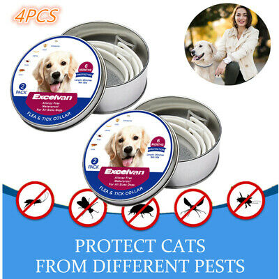 4PCS Adjustable Pet Dogs Flea and Tick 7-8 Month Collar Waterproof for All Dog