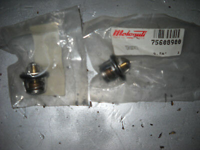 Malaguti Thermostat Flüssigkeit Motor Roller Original Madison Phantom 75608900