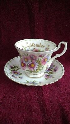 Royal Albert Cup and Saucer- Flower of the Month Series- Sept. Michaelmas Daisy