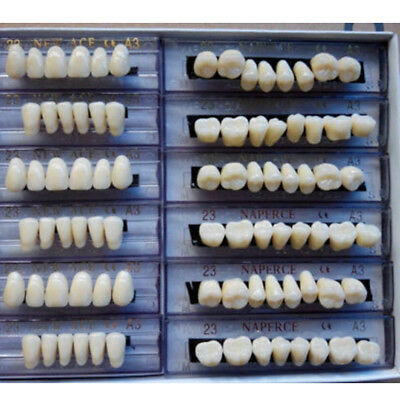 Useful Synthetic Polymer Resin Denture Teeth A2 Upper + Lower Dental 1 BOX /Set