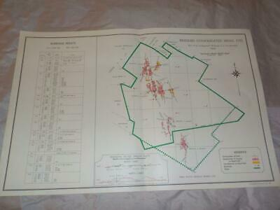 1958 Map Of Underground Workings Freddies Consolidated Gold Mines S. Africa  #24