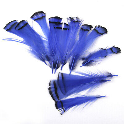 20pcs Silver Pheasant Black White Delicate Feathers DIY Craft Fly Fishing