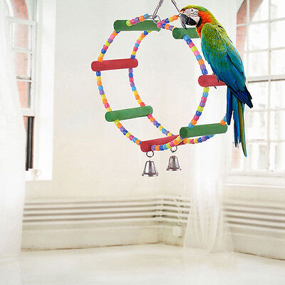 Colorful Swing Bird Toy Parrot Rope Harness Cage Parakeet Cockatiel Budgie_TI