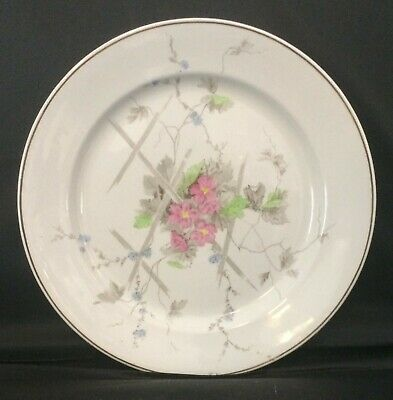 Antique Victorian Aesthetic Hand-Painted Pink Flowers Johnson Ironstone Plate