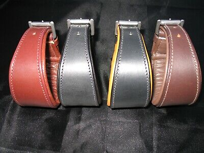 English Leather Whippet/Greyhound/Lurcher Comfort Collars