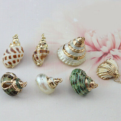 Natural Sea Shell Loose Beads Home Decoration Craft Conch Shell Pendant Jewelry