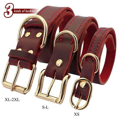 Best Genuine Leather Dog Collar for Small Large Dogs Chihuahua Labrador XS-2XL