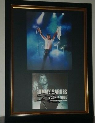 Hand Signed By Jimmy Barnes - With Coa - Framed  Autographed Display Cold Chisel