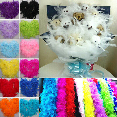 Fancy Craft Photo Lady Strip Hen Fluffy Wedding Party Boa Costume Feather 2m