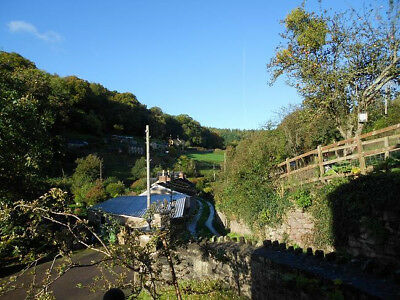 August midweek 4 nights dogfriendly cottage Forest of Dean