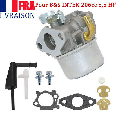 1 jeu de carburateur pour Briggs Stratton INTEK 206cc 5,5 HP 6.5 CV OHV 3500 W