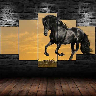 Framed Beautiful Black Horse Canvas Print Wall Art Home Decor 5 Piece