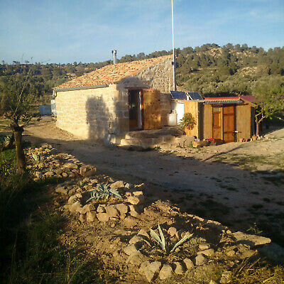 11 acres, olives and almonds, off grid, rural property in Spain with tiny house