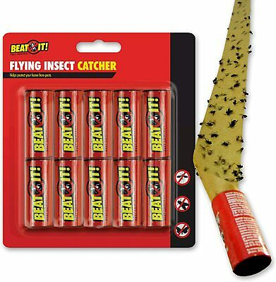 10 Fly Insect Catchers Stick Paper Wasp Ant Trap Killer Tape Aphids Pest Control