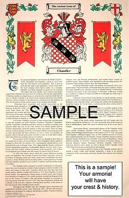 P 's SURNAME - Armorial Name History - Coat of Arms - Family Crest 11x17 CUSTOM