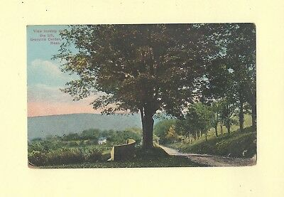 MA Granville Center 1919 antique postcard LARGE TREE & ROAD MASS to Springfield
