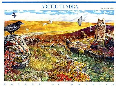 Arctic Tundra Complete Sheet of 10 S/A MNH $.37 Stamps Scott's 3802