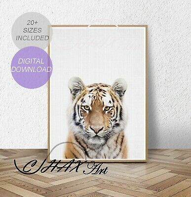 Tiger Print.Nursery Wall Art.Woodland Decor.Animal Prints.Baby.Wall Poster.016