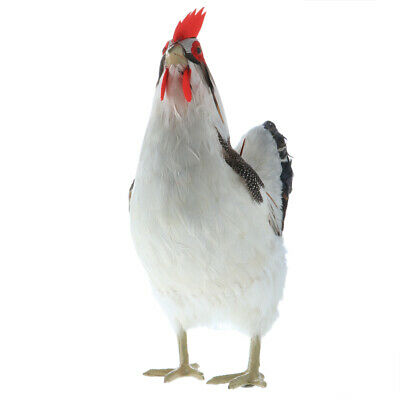 Rooster Chicken Farm Animals Model Lifelike Feathers Decoration Crafts