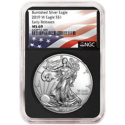 2019-W Burnished $1 American Silver Eagle NGC MS69 Flag ER Label Retro Core