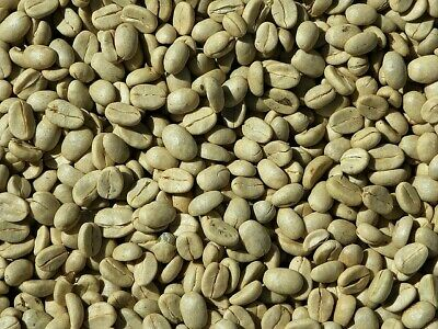 East Timor organic RAW GREEN Coffee Beans - 1 KG