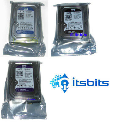 "Western Digital 3.5"" Sata Hard Drive 1Tb 2Tb 3Tb 4Tb  6 Tb Blue Purple Black Red"