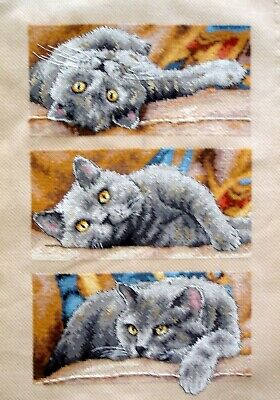 Dimensions Completed Counted Cross Stitch Unframed Picture Max The Cat