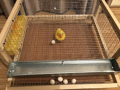 Cage for Quail sized birds