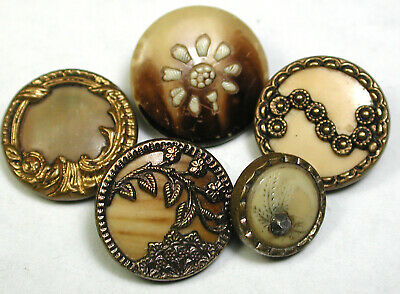 "BB Antique Button Victorian Celluloid Lot of 5 Cute Cuff Size 3/8"" & 9/16"" 1890s"