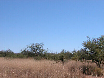 0.16 Acres +/-  Affordable Investment Lot 2 hours From Tuscon